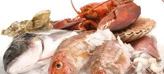 pesci alimentazione l importanza pesce nell alimentazione cucinarepesce