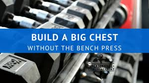 Dumbbell Exercises Chest No Bench - build a big chest without the bench press u2014 jacksonville fitness
