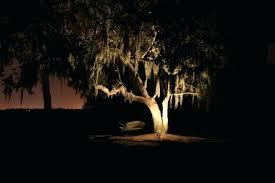 Led Landscape Tree Lights Tree Landscaping Lights Landscape Lighting Small Trees Landscape