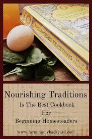best 25 nourishing traditions ideas on pinterest fermented