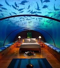chambre d hotel dubai dormez au coeur de l océan avec les hôtels sous marins