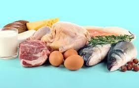 alimentazione ricca di proteine quale dieta ricca di proteine 礙 la migliore atkins dukan o