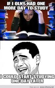 Study Memes - studying meme