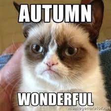 Autumn Memes - download autumn memes super grove