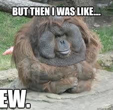 Funny Monkey Meme - i thought i was the ultimate monkey lover memes quickmeme