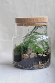 build your own corked jar terrarium at the sebright arms hackney
