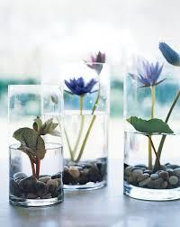 25 trending indoor water garden ideas on pinterest water