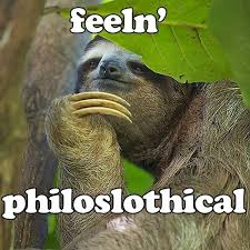 Angry Sloth Meme - philoslothical sloths know your meme