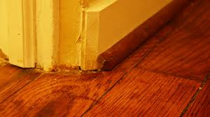 how to touch up scratch in hardwood floor checking in with chelsea