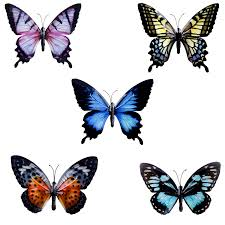 coloured metal wall mountable butterfly garden ornaments 5
