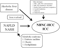 non b non c hepatocellular carcinoma review