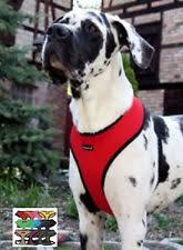 Comfort Flex Dog Harness Xxl Dog Harnesses Ebay