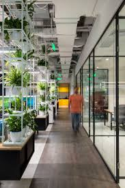 31 best office plants and green walls images on pinterest