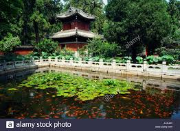 Beijing Botanical Garden Goldfish Pond In Wofo Si Temple Of The Reclining Buddha Beijing