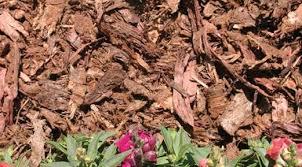 Garden Mulch Types - mulch 101 types of mulch