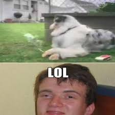 Really High Guy Meme - really high guy s dog by recyclebin meme center