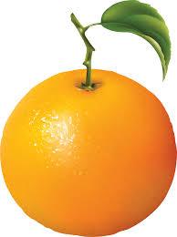 oranges clipart black and white oranges orange clipart black and white free images 2 clipartbarn