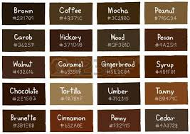 colour shades with names brown tone color shade background with code and name illustration