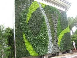 extraordinary outdoor wall garden design with various plants
