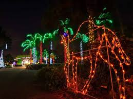 when do the zoo lights start where to see christmas lights in miami and fort lauderdale