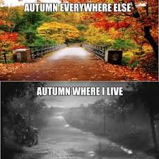 Autumn Meme - 14 fall memes so you can usher in the greatest season of them all