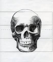 skull drawing front view by michaeldaviniart on deviantart