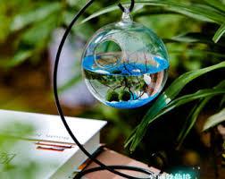 mini aquarium etsy