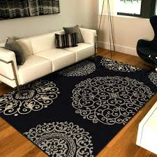 5 X 8 Area Rugs 5 8 Area Rugs Target Lowes Residenciarusc