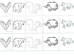 image gallery hibernating animals worksheet
