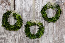 artificial boxwood wreath preserved boxwood wreaths with ribbon