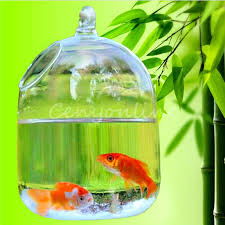 Goldfish In A Vase Compare Prices On Small Plants In Vase Online Shopping Buy Low