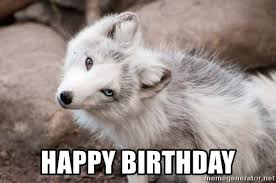 Angry Wolf Meme Generator - happy birthday kelly baby courage wolf meme generator creative ideas