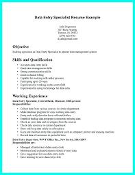 data entry resume sample pdf human resource management thesis