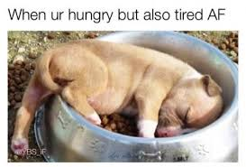 Meme Tired - when you re hungry but also tired af meme xyz