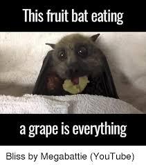 Bat Meme - 25 best memes about fruit bat fruit bat memes