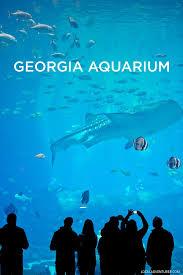 aquarium the georgia aquarium atlanta ga world u0027s largest aquarium