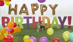 birthdays u0027ll make you u0027jump u0027 song parody happy birthday ecard