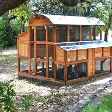 build a chicken coop best coop building plans images on backyard
