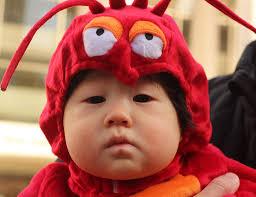Lobster Costume Lobster Halloween Costume
