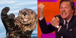 Cumberbatch Otter Meme - benedict cumberbatch updates classic otter meme and johnny depp is