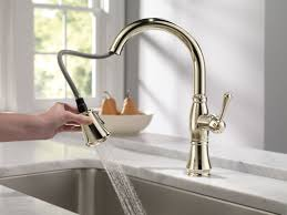 Polished Brass Kitchen Faucet by Faucet Com 9197 Pn Dst In Polished Nickel By Delta