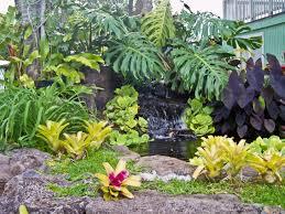 Theme Garden Ideas Imposing Small Tropical Theme Home Garden Design Ideas Landscape
