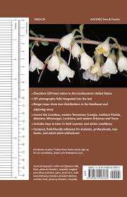 native trees of the southeast l katherine kirkman claud l