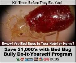 Bed Bugs How Do You Get Them How To Get Rid Of Bed Bugs U2013 Helptionary