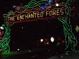 enchanted forest christmas lights annual holiday tradition a visit to hershey sweet lights