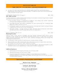sle seo resume search marketing manager resume sles velvet sle sevte