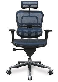 Best Leather Desk Chair Ergonomic Office Chair Reviews Atralia Pick Dom Task Best