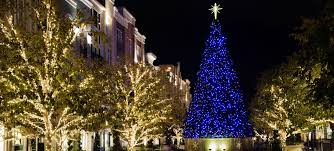 christmas light service chicago commercial grade outdoor christmas lights roselle il professional