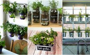 indoor kitchen garden ideas herb garden ideas and helpful tips for maintaining
