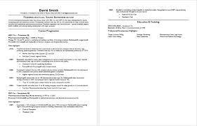 entry level sales resume sample of sales resume the 25 best sample resume ideas on
